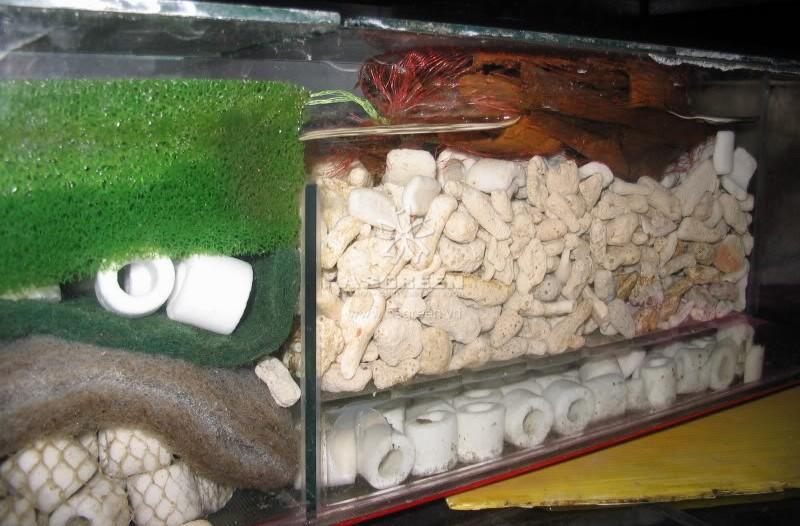 Vật liệu lọc san hô vụn 3