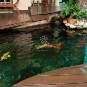 Mẫu hồ cá Koi hiện đại 2