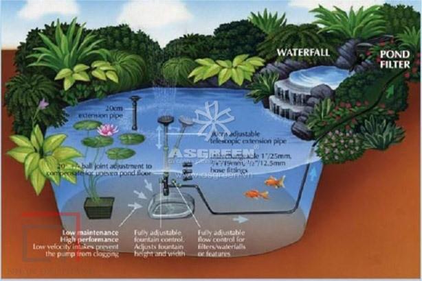 Một bản phác thảo hồ cá koi sân vườn đơn giản