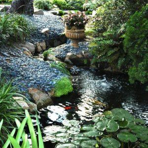 Mẫu hồ cá Koi truyền thống Nhật Bản 5