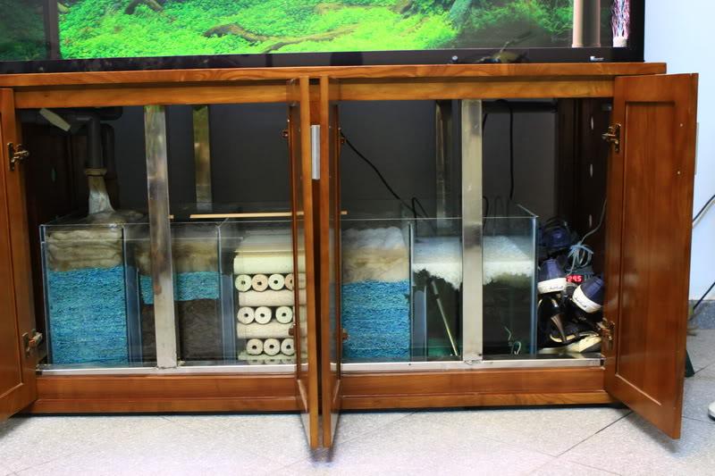 Hệ thống lọc tràn dưới cho bể cá