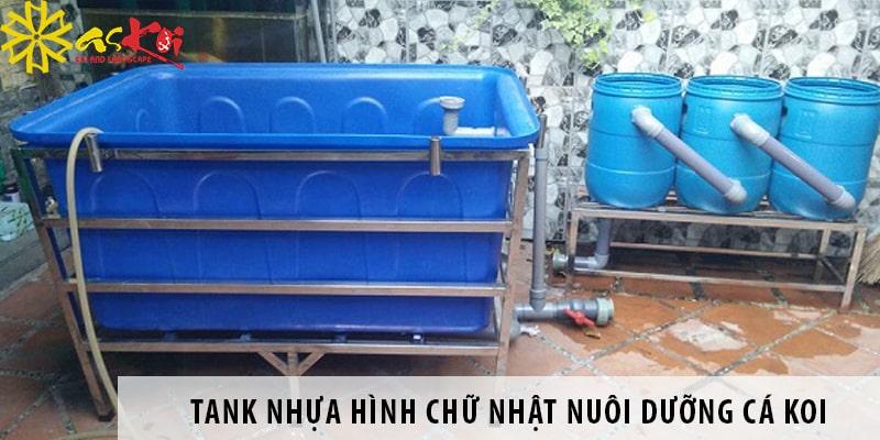 Ưu Nhược điểm Của Tank Nhựa Hình Chữ Nhật Nuôi Cá Koi