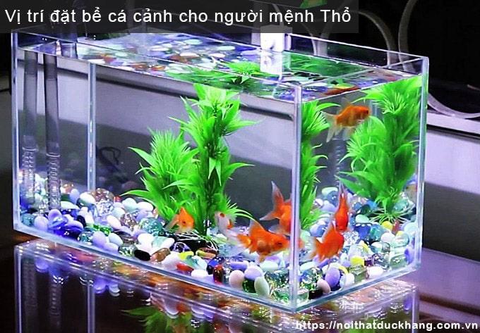 Vị trí đặt bể cá cảnh cho người mệnh Thổ
