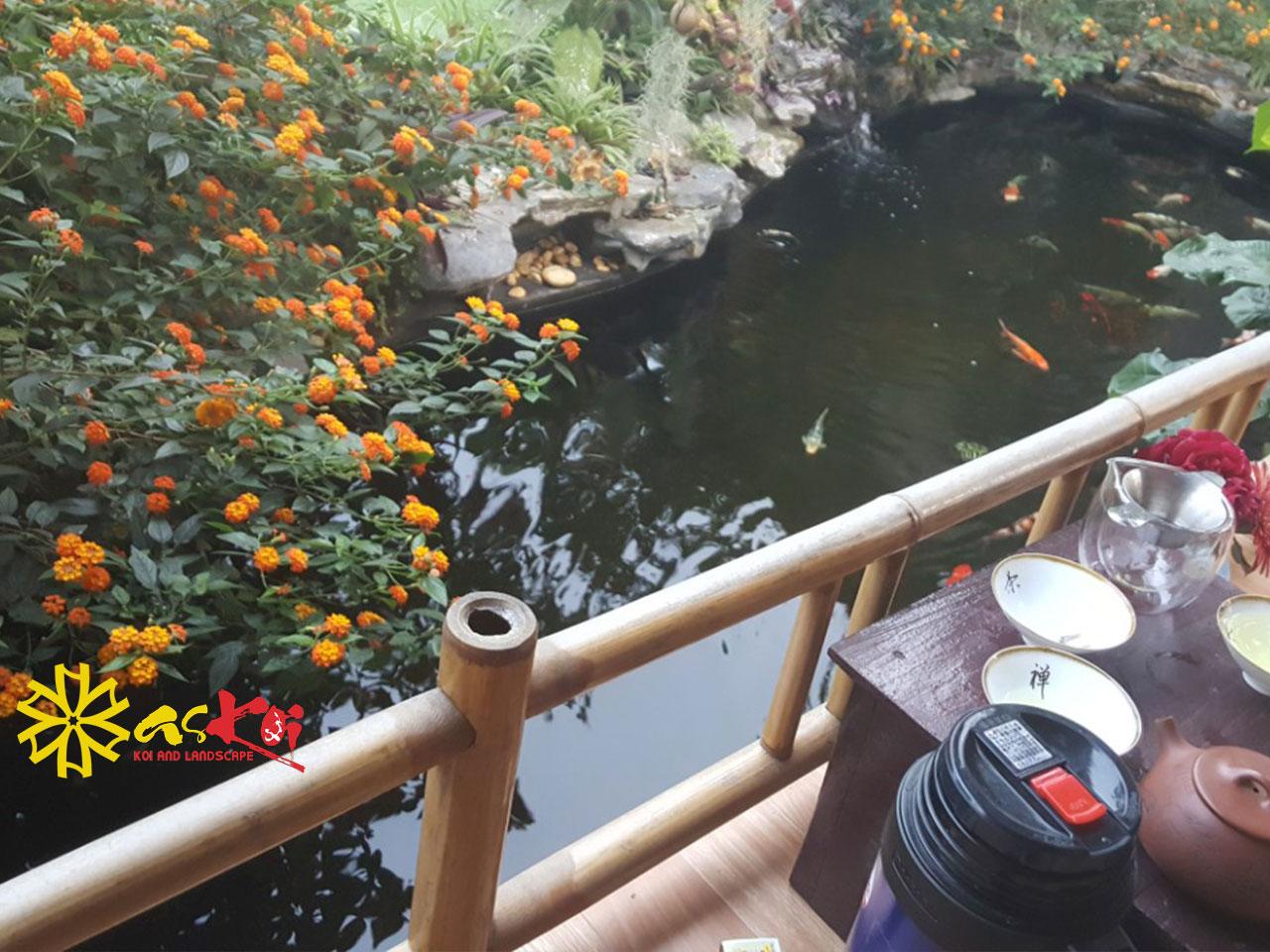 Hồ Koi 20m3 Chùa Vĩnh Lộc Hoàn Thiện