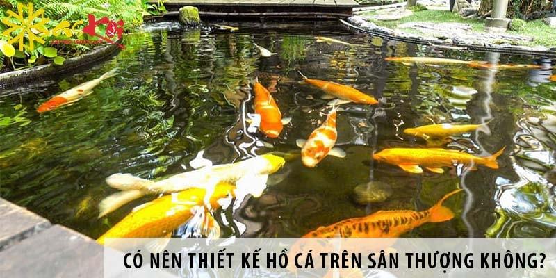Có Nên Thiết Kế Hồ Cá Cảnh Trên Sân Thượng?