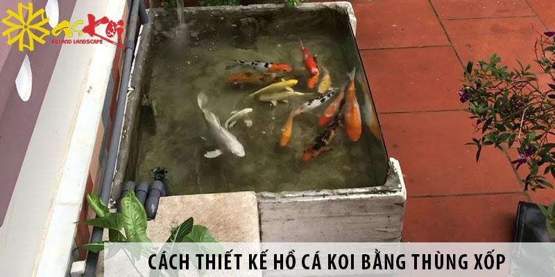 Cách Thiết Kế Hồ Cá Koi Bằng Thùng Xốp đơn Giản, Dễ Làm