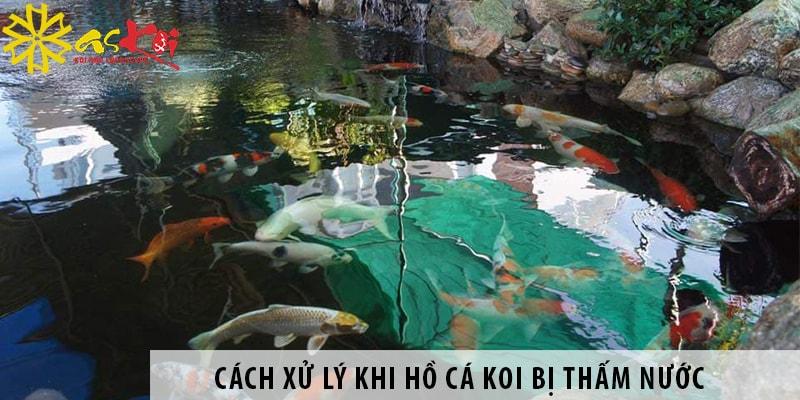 Cách Xử Lý Khi Hồ Cá Koi Bị Thấm Nước - Biện Pháp Chống Thấm