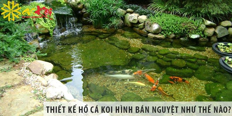 Thiết Kế Hồ Cá Koi Hình Bán Nguyệt Như Thế Nào?